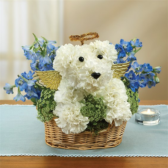 All Dogs Go To Heaven | 1-800-Flowers - Carle Place