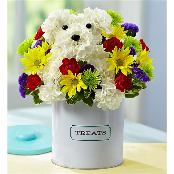 1-800-FLOWERS® A-DOG-ABLE® | 1-800-Flowers - Carle Place